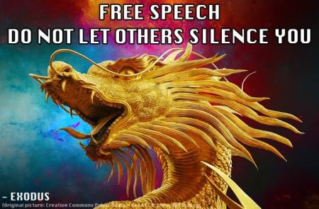 The right to free speech